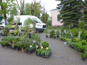 Am Anfang waren die Stände für Gartenpflanzen, aber auch Gartengeräte und sogar vieles für den Haushalt konnten wir hier sehen.